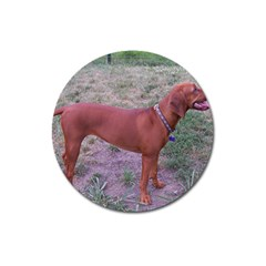 Redbone Coonhound Full Magnet 3  (Round)