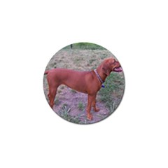 Redbone Coonhound Full Golf Ball Marker (4 pack)