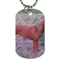Redbone Coonhound Full Dog Tag (Two Sides)