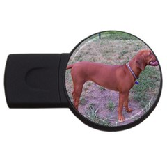Redbone Coonhound Full USB Flash Drive Round (2 GB)
