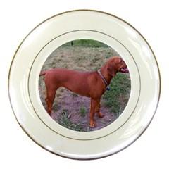 Redbone Coonhound Full Porcelain Plates
