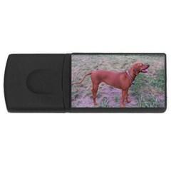 Redbone Coonhound Full USB Flash Drive Rectangular (4 GB)