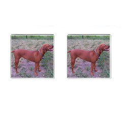Redbone Coonhound Full Cufflinks (Square)