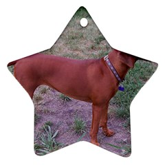 Redbone Coonhound Full Star Ornament (Two Sides)