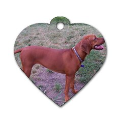 Redbone Coonhound Full Dog Tag Heart (One Side)