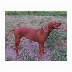 Redbone Coonhound Full Small Glasses Cloth (2-Side)