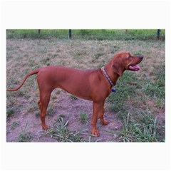 Redbone Coonhound Full Large Glasses Cloth