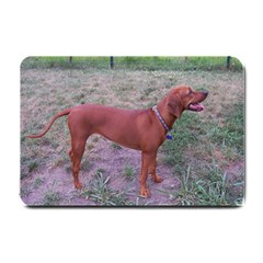 Redbone Coonhound Full Small Doormat
