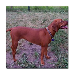 Redbone Coonhound Full Face Towel
