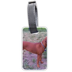 Redbone Coonhound Full Luggage Tags (Two Sides)