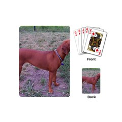 Redbone Coonhound Full Playing Cards (Mini)