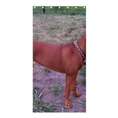 Redbone Coonhound Full Shower Curtain 36  x 72  (Stall)