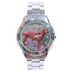 Redbone Coonhound Full Stainless Steel Analogue Watch