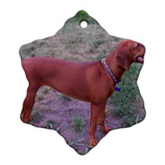 Redbone Coonhound Full Snowflake Ornament (Two Sides)