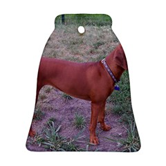 Redbone Coonhound Full Bell Ornament (Two Sides)