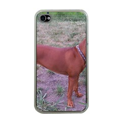 Redbone Coonhound Full Apple iPhone 4 Case (Clear)