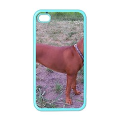 Redbone Coonhound Full Apple iPhone 4 Case (Color)