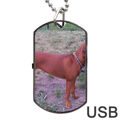 Redbone Coonhound Full Dog Tag USB Flash (Two Sides)