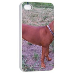 Redbone Coonhound Full Apple iPhone 4/4s Seamless Case (White)