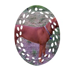 Redbone Coonhound Full Oval Filigree Ornament (Two Sides)