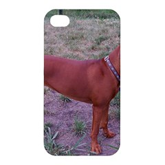 Redbone Coonhound Full Apple iPhone 4/4S Hardshell Case