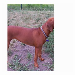 Redbone Coonhound Full Small Garden Flag (Two Sides)