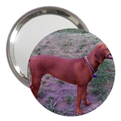 Redbone Coonhound Full 3  Handbag Mirrors