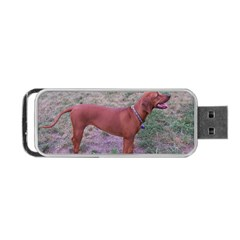 Redbone Coonhound Full Portable USB Flash (Two Sides)