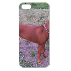 Redbone Coonhound Full Apple Seamless iPhone 5 Case (Clear)