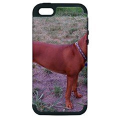 Redbone Coonhound Full Apple iPhone 5 Hardshell Case (PC+Silicone)