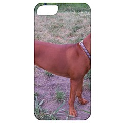 Redbone Coonhound Full Apple iPhone 5 Classic Hardshell Case