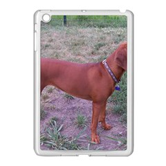 Redbone Coonhound Full Apple iPad Mini Case (White)