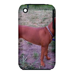 Redbone Coonhound Full iPhone 3S/3GS
