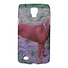 Redbone Coonhound Full Galaxy S4 Active