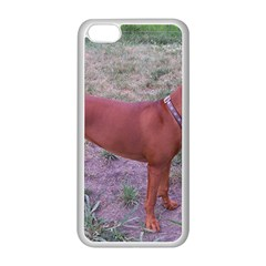 Redbone Coonhound Full Apple iPhone 5C Seamless Case (White)