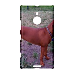 Redbone Coonhound Full Nokia Lumia 1520