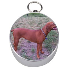 Redbone Coonhound Full Silver Compasses