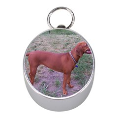 Redbone Coonhound Full Mini Silver Compasses