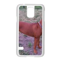 Redbone Coonhound Full Samsung Galaxy S5 Case (White)