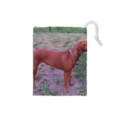 Redbone Coonhound Full Drawstring Pouches (Small)