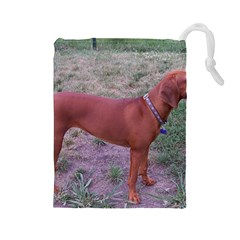 Redbone Coonhound Full Drawstring Pouches (Large)
