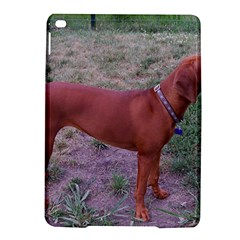 Redbone Coonhound Full iPad Air 2 Hardshell Cases