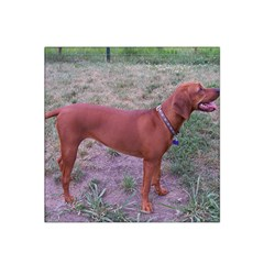 Redbone Coonhound Full Satin Bandana Scarf