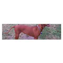 Redbone Coonhound Full Satin Scarf (Oblong)