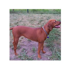 Redbone Coonhound Full Small Satin Scarf (Square)