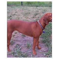 Redbone Coonhound Full Drawstring Bag (Small)