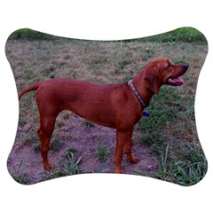 Redbone Coonhound Full Jigsaw Puzzle Photo Stand (Bow)