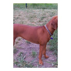 Redbone Coonhound Full Large Tapestry