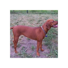 Redbone Coonhound Full Square Tapestry (Small)