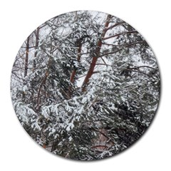 Winter Fall Trees Round Mousepads